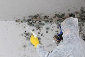 Feuchtigkeit im Keller kann unter Umständen zu massiven Schäden an der Bausubstanz führen.