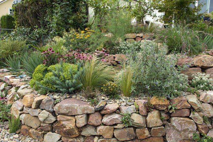 Ob Grundstücksbegrenzung oder Gestaltungselement, eine Trockenmauer kann ein echter Hingucker sein.