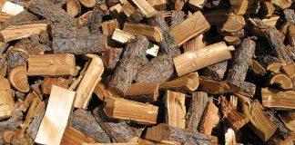 Wer in unseren Breiten Lärchenholz kaufen möchte, erhält meistens Holz der europäischen oder sibirischen Lärche.