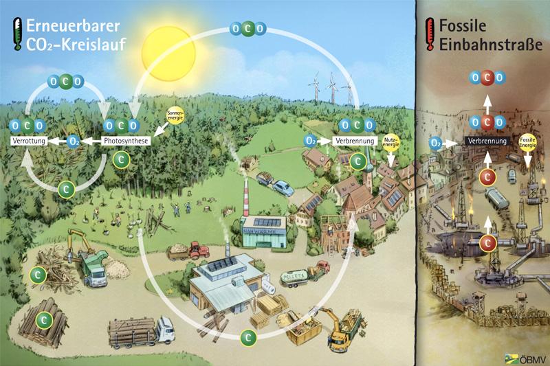 Ein nachhaltig bewirtschafteter Wald ist klimaneutral und schafft Wertschöpfung in der Region.